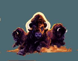Buffalo_character